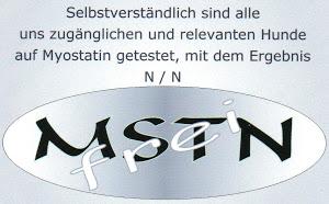 mstn-frei