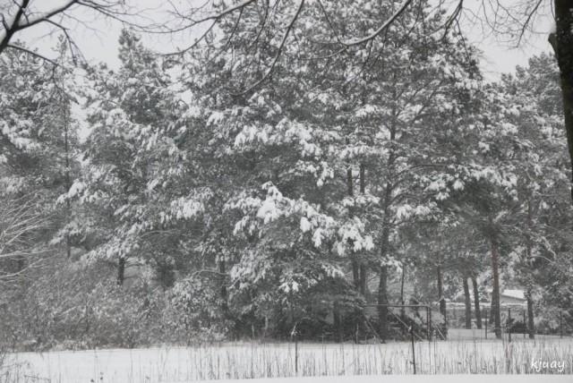 schneeohneende 015