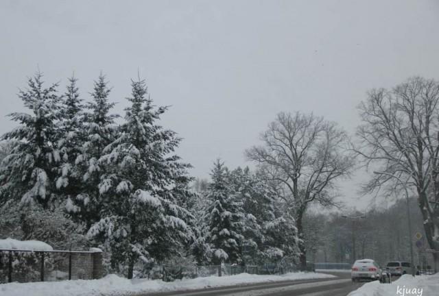 schneeohneende 018